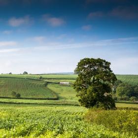 Yeovil, Somerset